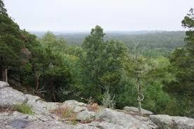 Half Day Retreat - Moose Hill Wildlife Sanctuary