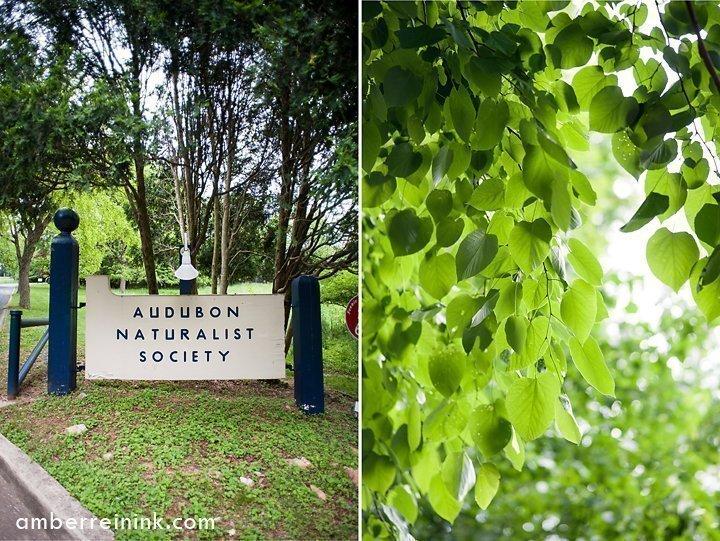 Audubon Naturalist Society - Budbreak and Spring Wildflower Walk - Theodore Roosevelt Island